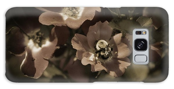 Bumblebee On Blush Country Rose In Sepia Tones Galaxy Case