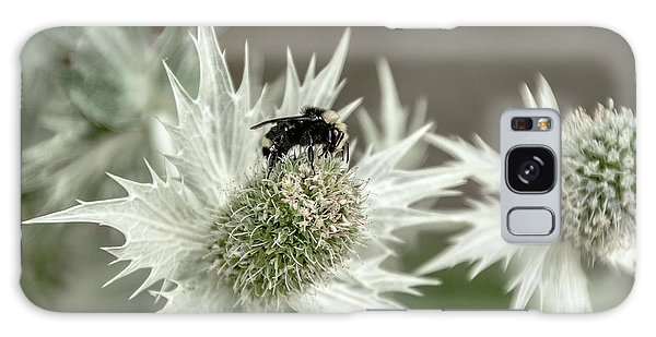 Bumblebee On Thistle Flower Galaxy Case by Victoria Harrington
