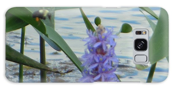 Bumblebee Pickerelweed Moth Galaxy Case