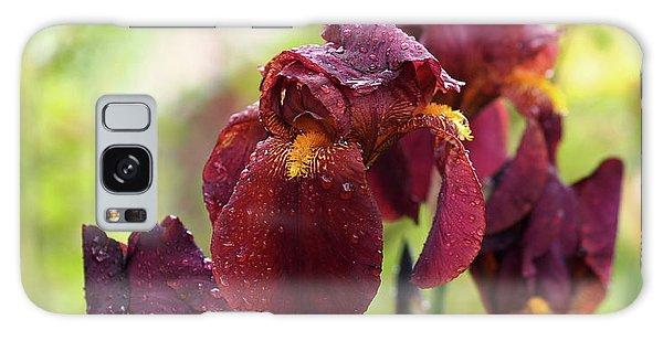 Burgundy Bearded Irises In The Rain Galaxy Case by Rona Black