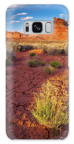 Southwest Usa Galaxy Case - Burning Bush by Inge Johnsson