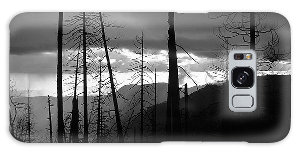 Burnt Forest - Yosemite Galaxy Case
