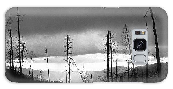 Burnt Forest II - Yosemite Galaxy Case