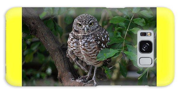 Burrowing Owl Color Version Galaxy Case