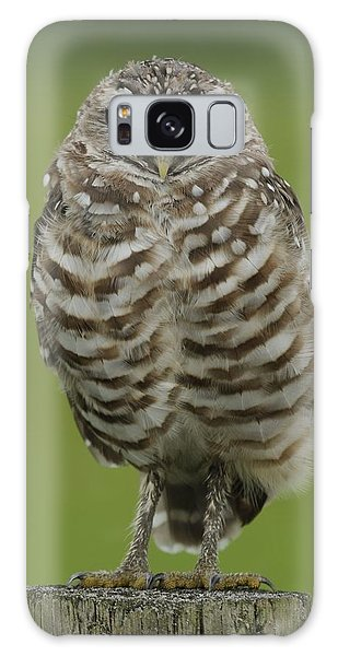 Burrowing Owl Lookout Galaxy Case