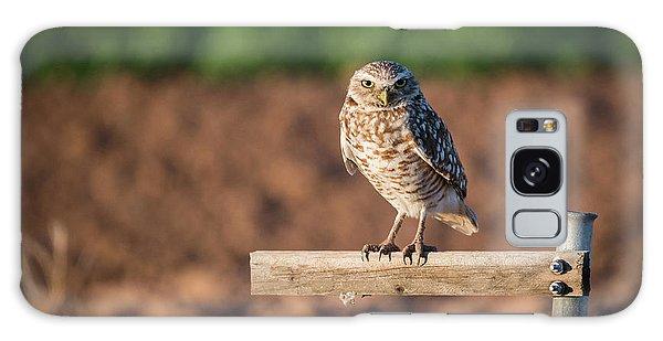 Burrowing Owl On A Perch Galaxy Case