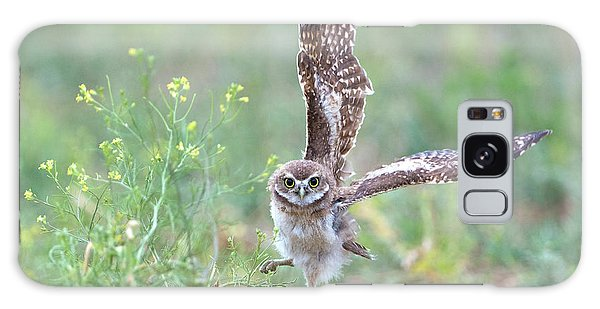 Burrowing Owl Spies Grasshopper Galaxy Case