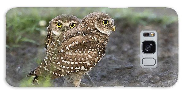 Burrowing Owl Twins Galaxy Case
