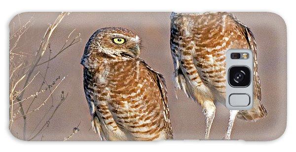 Burrowing Owls At Salton Sea Galaxy Case