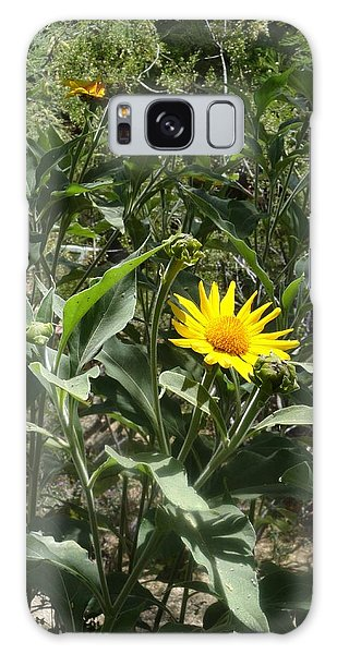 Burst Of Sun Flower Galaxy Case