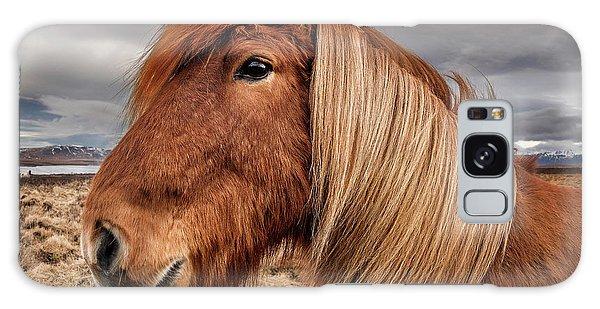 Galaxy Case featuring the photograph Bushy Icelandic Horse by Pradeep Raja PRINTS