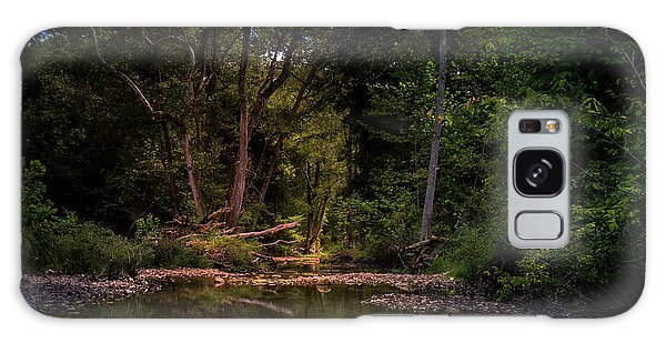 Busiek State Forest Galaxy Case
