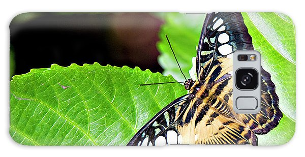 Butterfly 13a Galaxy Case