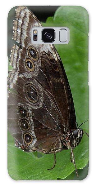 Butterfly 5 Galaxy Case