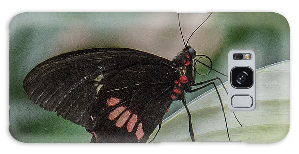 Butterfly 8 Galaxy Case