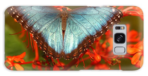 Butterfly Among The Flowers Galaxy Case by Max Allen