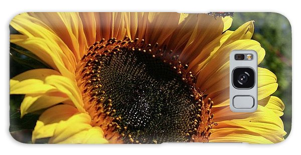 Butterfly And Sunflower Galaxy Case by Martina Fagan