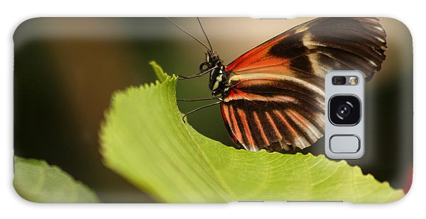 Butterfly Curling Edge Of Leaf Galaxy Case by Max Allen