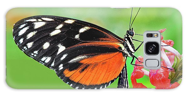 Brookside Gardens Galaxy Case - Butterfly  Golden Helicon by Regina Geoghan