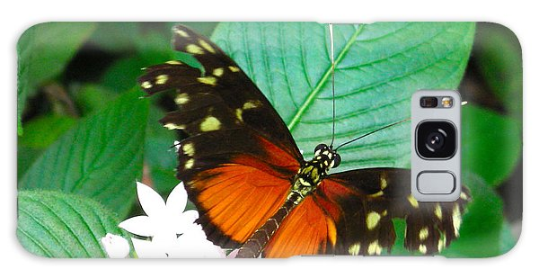 Butterfly House  Galaxy Case