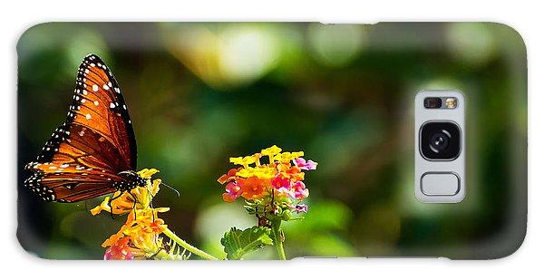 Butterfly On A Flower Galaxy Case