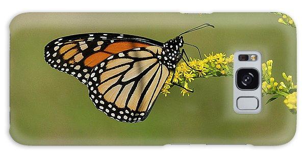 Butterfly On Flowers Galaxy Case
