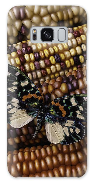 Indian Corn Galaxy Case - Butterfly On Indian Corn by Garry Gay