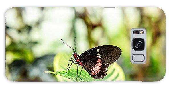 Butterfly On Leaf Galaxy Case