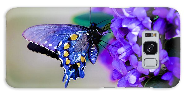 Butterfly On Mountain Laurel Galaxy Case