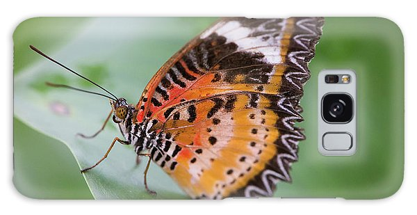 Butterfly On The Edge Of Leaf Galaxy Case