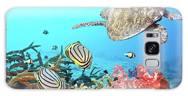 Scuba Diving Galaxy Case - Butterflyfishes And Turtle by MotHaiBaPhoto Prints