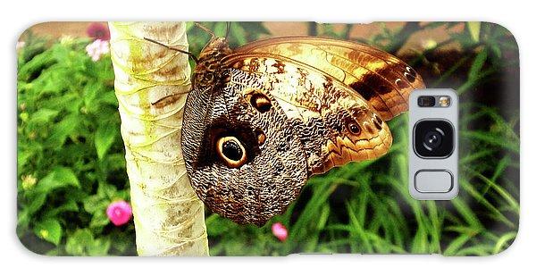 Butterfly's Eyes Galaxy Case
