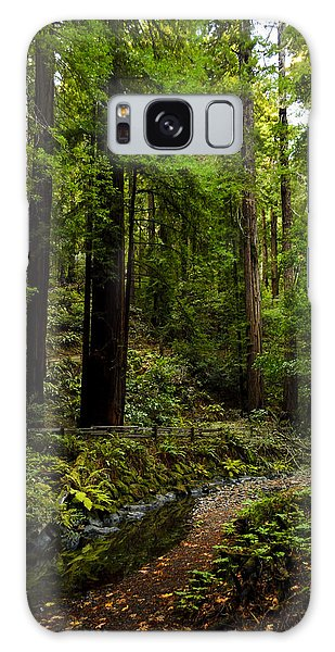 By The Stream In Muir Woods Galaxy Case