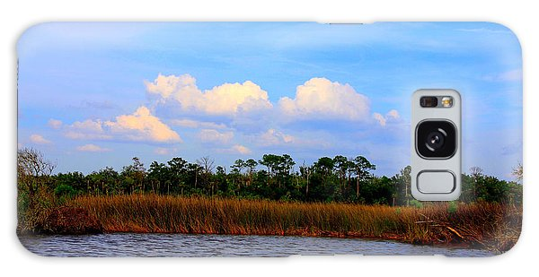 Cabbage Palms And Salt Marsh Grasses Of The Waccasassa Preserve Galaxy Case by Barbara Bowen