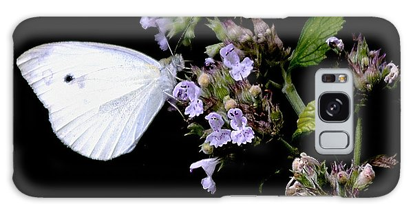 Cabbage White On Catnip Galaxy Case by Randy Bodkins