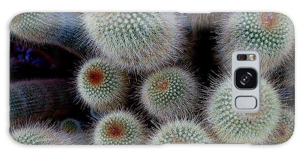 Cacti Family Galaxy Case