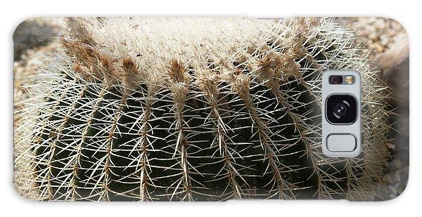 Cacti Fine Art Galaxy Case