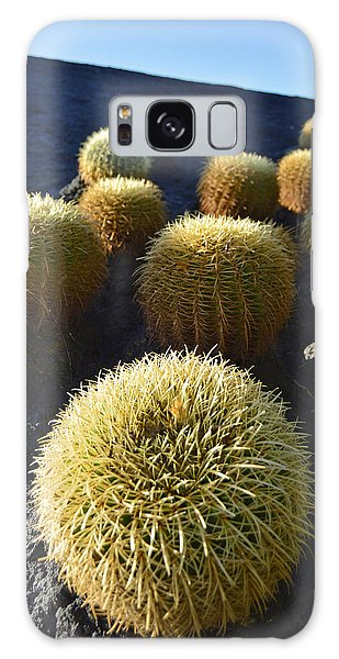 Cacti On The Roof Galaxy Case by Marek Stepan