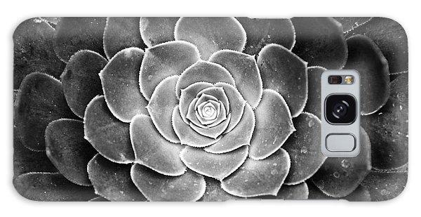 Cactus 18 Deep Bw Galaxy Case
