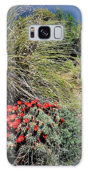Crimson Barrel Cactus Galaxy Case