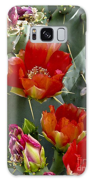 Cactus Blossom Galaxy Case by Kathy McClure