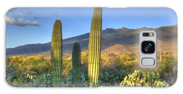 Cactus Desert Landscape Galaxy Case