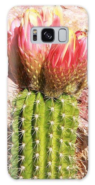 Cactus Flowe Bee Galaxy Case