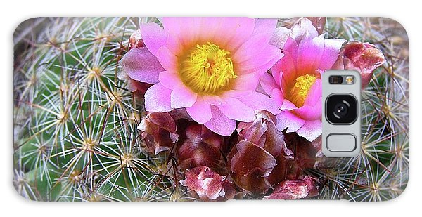 Cactus Flower  Galaxy Case