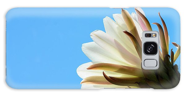 Cactus Flower Galaxy Case