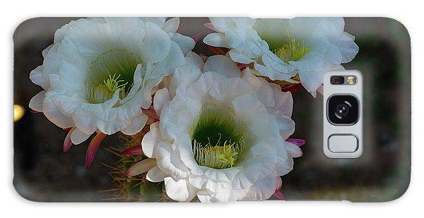 Cactus Flowers Galaxy Case
