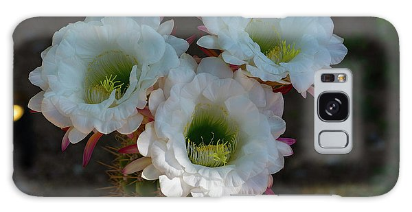 Cactus Flowers Galaxy Case