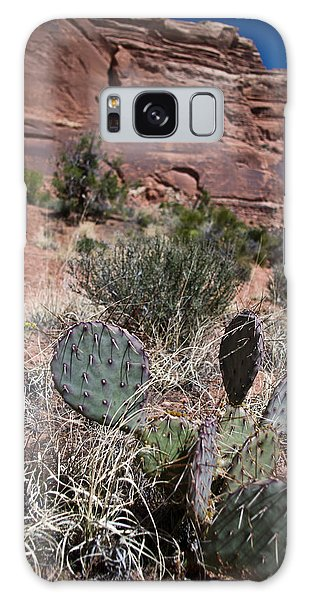 Cactus In Arches Nat'l Park Galaxy Case