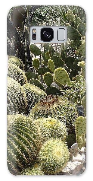 Cactus Life In Arizona Galaxy Case