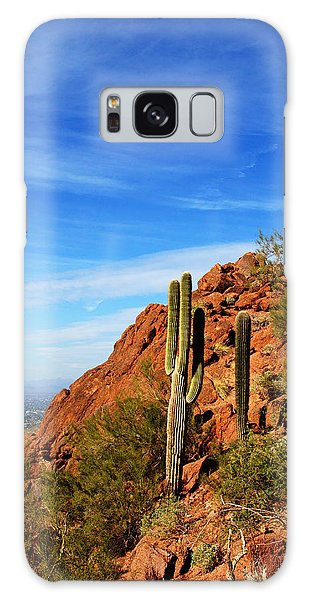 Cactus On Camelback 14x17 Galaxy Case by Daniel Woodrum